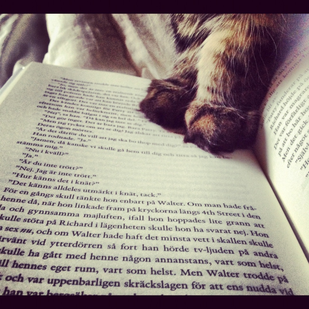 Cat paws on a book page making a statement